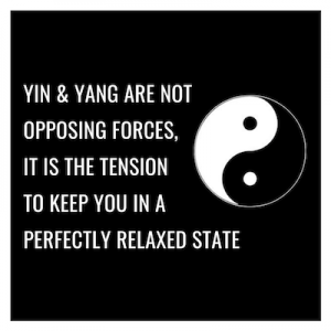 YIN & YANG ARE NOT OPPOSING FORCES, IT IS THE TENSION TO KEEP YOU IN A PERFECTLY RELAXED STATE